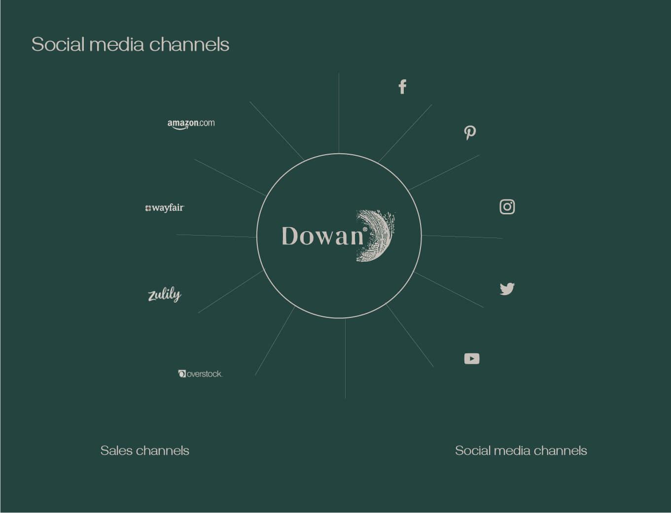 Dowan social media channel chart with big web shops like amazon overstock