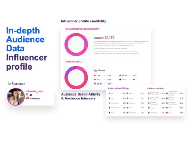 audience data and influencer profile overview